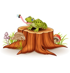 Cute frog catching fly on tree stump vector image