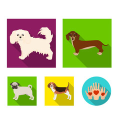 Dog animal domestic and other web icon in flat vector