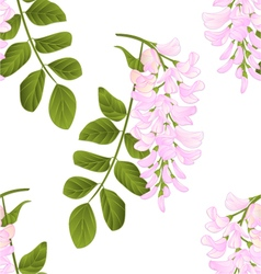 Seamless texture Locust tree twig vector image