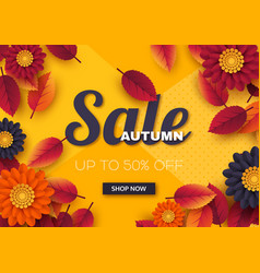 autumn sale banner with 3d leaves and flowers vector image