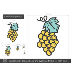 Bunch of grapes line icon vector