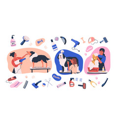 Collection of scenes with people grooming dogs and vector
