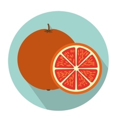 Colorful circular shape with orange fruit and vector