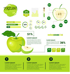 fresh organic infographics natural fruits growth vector image