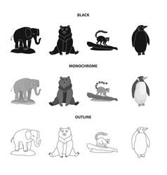 isolated object of nature and fun icon collection vector image