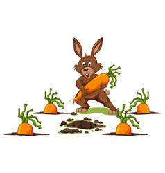 rabbit with carrots scene vector image