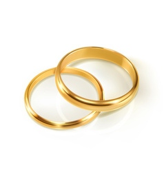 Pair of wedding rings vector image vector image