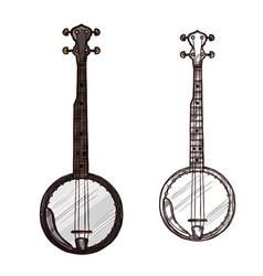 sketch banjo guitar musical instrument vector image