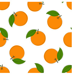 seamless pattern with hand drawn oranges on vector image vector image