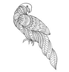 Zentangle stylized parrot vector image