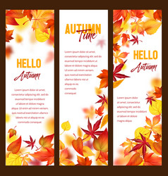 Autumn banners of fall leaf falling foliage vector