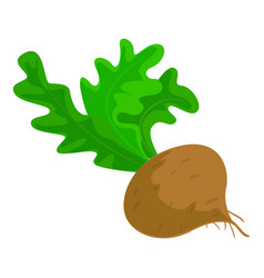 brown radish icon cartoon style vector image