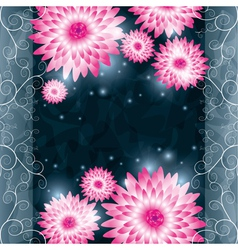 Flower chrysanthemum background Invitation or vector image
