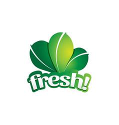 fresh green leaf vegetable logo symbol icon vector image