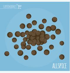 allspice flat design icon vector image