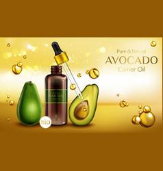 Avocado cosmetics oil organic beauty product vector