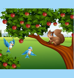 cute squirrel on the apple tree vector image