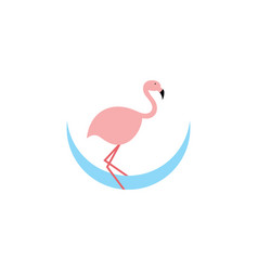 flamingo logo icon design symbol vector image