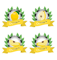 For ripe fruit yellow quince vector