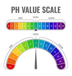 Ph alkaline acidic scale indicator water balance vector