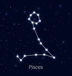 Sign zodiac pisces night sky background vector