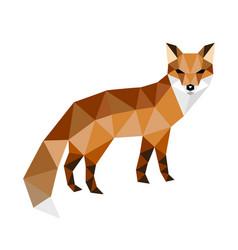 head of fox vector image