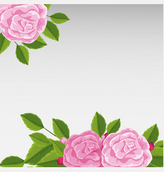 background template with pink roses vector image