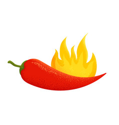 chili pepper with fire vector image