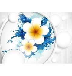 Frangipani Flowers Composition vector