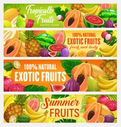 Fresh cartoon fruits banners vector