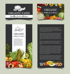 vegetables and fresh fruits at market banner vector image