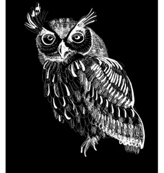 owl hand-drawing on a black background vector image