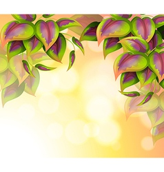 A special paper with heart-shaped leaves vector image vector image