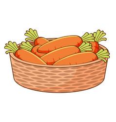 basket carrots on white background vector image