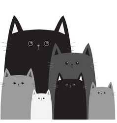 black gray cat head face different size big small vector image
