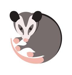 Cartoon opossum flat style vector