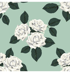Classic vintage seamless pattern with white roses vector