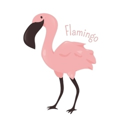 Flamingo isolated Child fun pattern icon vector image