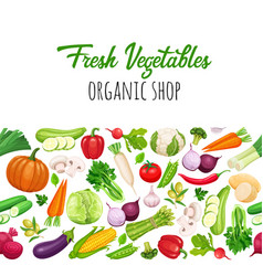 Seamless border with vegetables vector