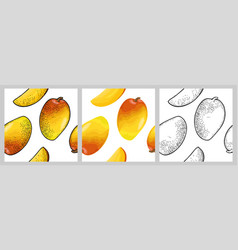 seamless pattern fresh whole and slice mango vector image