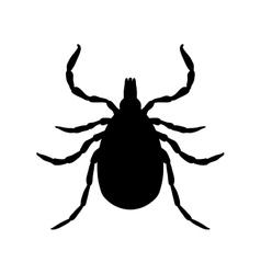 Tick parasite sketch tick mite tick isolated vector