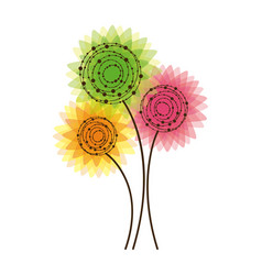 colorful rounds flowers icon vector image