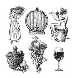 set hand drawn elements for wine design vector image
