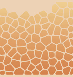 The pattern of the voronoi vector