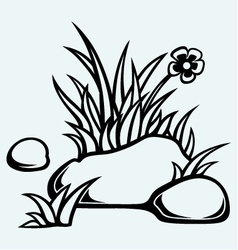 Grass in stones vector image