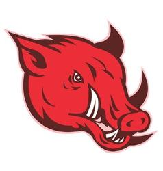razorback wild hog vector image