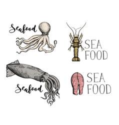 seafood vintage hand drawn icon set vector image