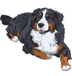 Dog breed vector