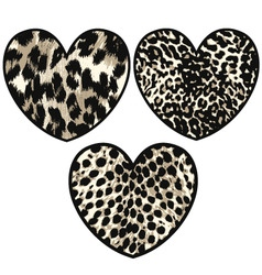 heart with animal skin vector image vector image