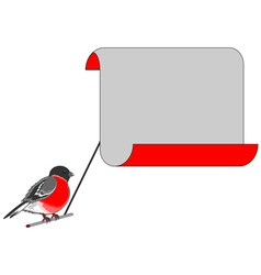 A bullfinch with a big blank paper vector